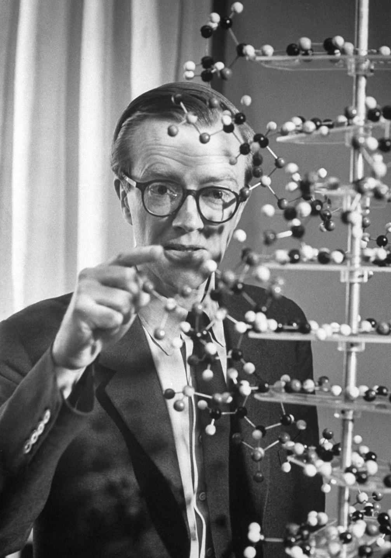 Maurice Wilkins (1916-2004) sdílel Nobelovu cenu za rentgenové snímky DNA.
